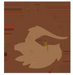 Genussfux Shop - Hanfschokoladen & Hanfnougats